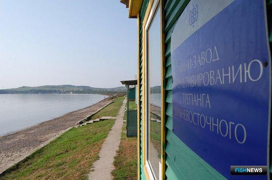 Мини-завод по культивированию трепанга дальневосточного Дальрыбвтуза