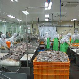 5 Международная специализированная выставка рыбопродукции и рыбного хозяйства «Busan International Seafood & Fisheries Expo 2007». Пусан, ноябрь 2007 г.