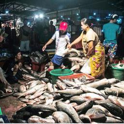 Поставщики на рыбном рынке Ки Мин Дайн. Фото Myanmar Times