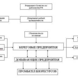 Схема интеграции рыбопромышленного комплекса