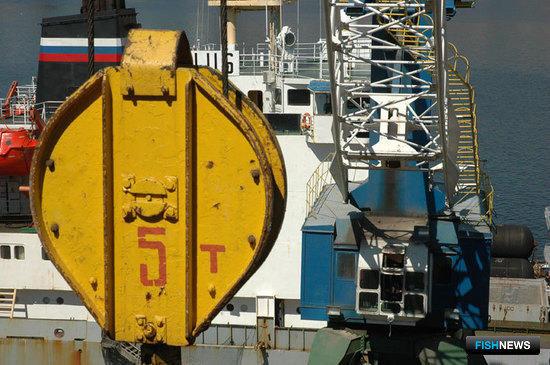 Морской рыбный порт не пережиток прошлого, а вынужденная необходимость