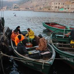 «Прибрежники» Крыма выгружают улов