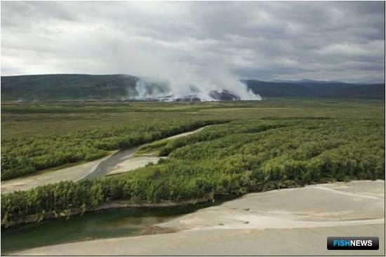 Пожар в бассейне реки Апука (верхнее течение). Фото пресс-службы КамчатНИРО