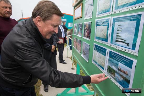 Руководитель администрации Президента Сергей Иванов познакомился с работой в рыбной отрасли Курил. Фото пресс-службы правительства Сахалинской области.