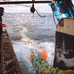 Минэкономразвития отразило наиболее принципиальные замечания рыбохозяйственных организаций в своих заключениях на проекты правовых актов по инвестквотам