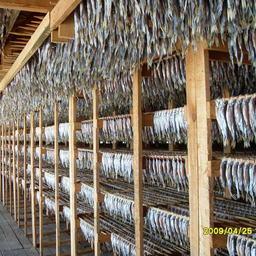 На внутренний рынок в 2016 году ушло 52%, или 155 тыс. тонн, рыбопродукции, произведенной предприятиями Хабаровского края