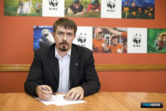 Координатор проектов программы по устойчивому морскому рыболовству Всемирного фонда дикой природы (WWF) Александр МОИСЕЕВ
