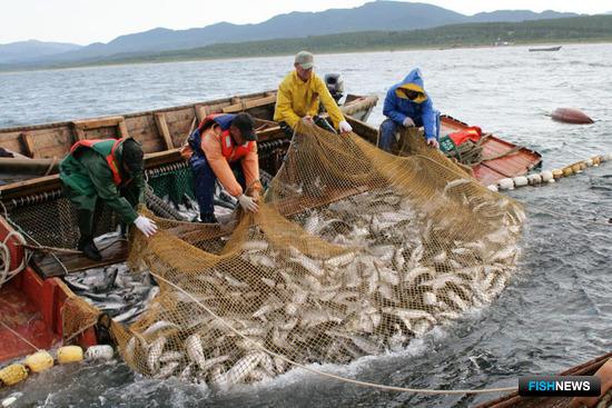 Ключевые для рыбаков поправки должны уйти в Минсельхоз до 10 апреля