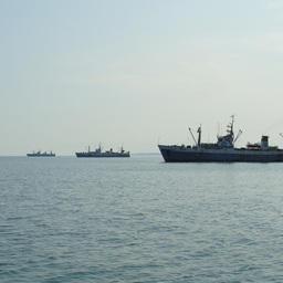 В РСПП формируют план работы Комиссии по рыбному хозяйству и аквакультуре