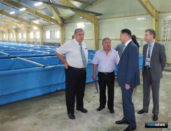 В октябре 2015 года введен в эксплуатацию после реконструкции первой очереди Барабашевский лососевый рыбный завод в Приморском крае.