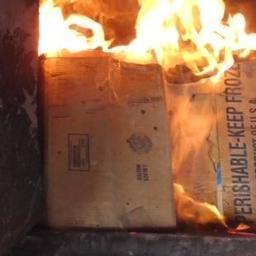 Уничтожение санкционной икры в Белгородской области. Фото пресс-службы Россельхознадзора