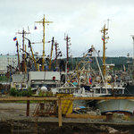 Проблемы рыбного острова