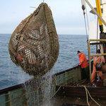 Рыбаки просят решить вопрос с неоднократным пересечением госграницы