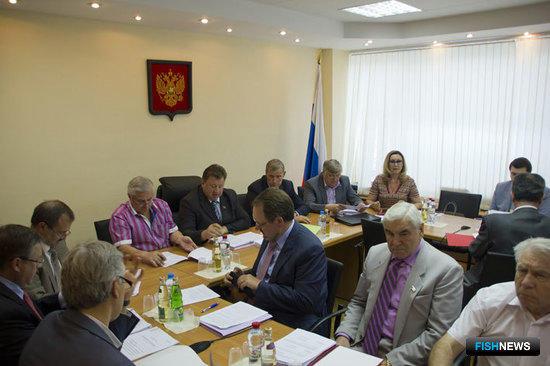 Заседание комитета Государственной Думы по природным ресурсам, природопользованию и экологии, 13 июня 2013 г.