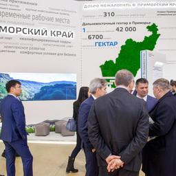 На стенде Приморского края, «Дни Дальнего Востока в Москве»