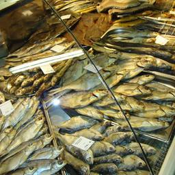 Рыбный отдел в магазине «Планета-Земля»