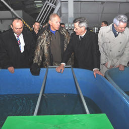 Открытие нового цеха научно-экспериментальной базы «БИОС». Фото предоставлено пресс-службой ФГУП «КаспНИРХ».