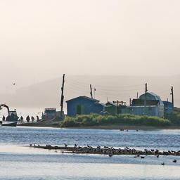 Рыболовные компании столкнулись с проблемами при перерегистрации