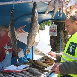 Тонны рыбопродукции сняты с реализации