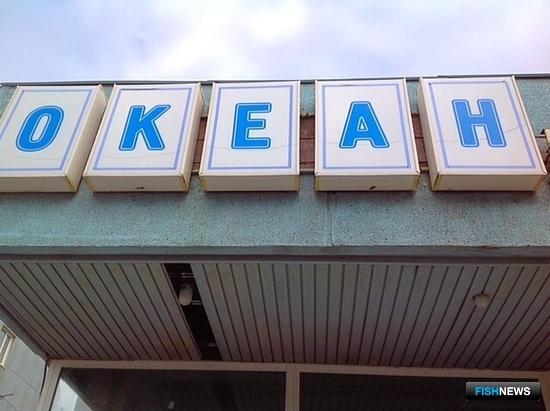Осенью в Петропавловске-Камчатском откроется магазин «Океан», торгующий рыбой и морепродуктами по ценам производителей. Фото пресс-службы правительства Камчатского края.