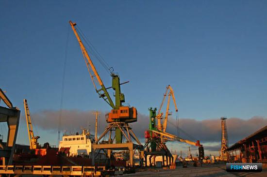 В новый год с новыми проверками. Фото пресс-службы Мурманского морского рыбного порта