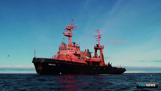 Буксир «Микула». Фото предоставлено Северным экспедиционным отрядом аварийно-спасательных работ Росрыболовства.