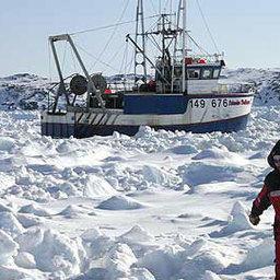 Более 100 судов оказались в ледовом плену вблизи Ньюфаундленда