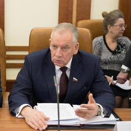 Руководитель группы, сенатор Сергей МИТИН. Фото пресс-службы Совета Федерации
