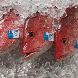 Рыба с «историей» на прилавке. В ответе за каждую.