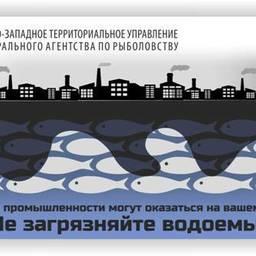 Жителей Северной столицы призывают блюсти чистоту водоемов
