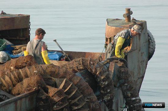 Закон об аквакультуре в поисках баланса