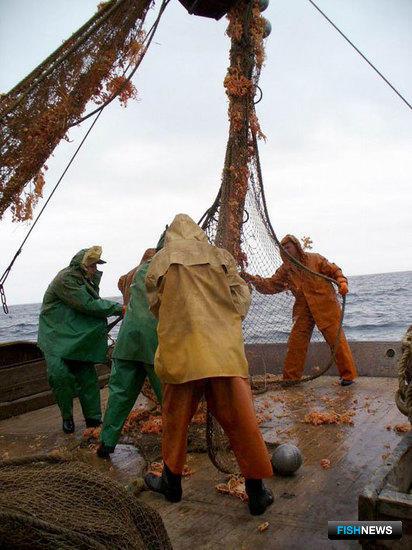 Наиболее востребованными в рыбной отрасли остаются представители рабочих специальностей