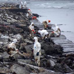 Ликвидация последствий разлива с танкера «Надежда». Автор фото Дмитрий Лисицын / «Экологическая вахта Сахалина»