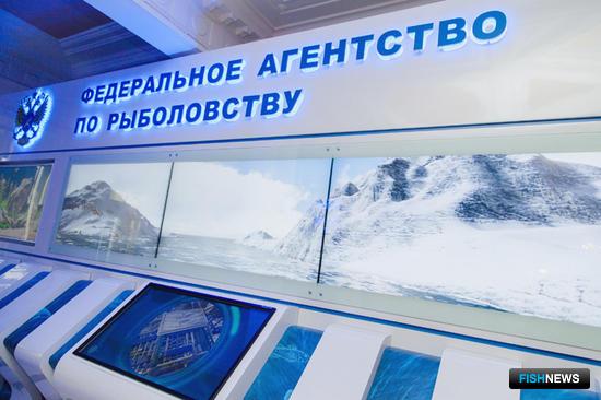 В Росрыболовстве размещен интерактивный комплекс, отражающий текущее состояние отечественной рыбной отрасли