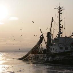 В Сахалинской области готовят пилотный проект, который позволит предпринимателям и рыбакам-любителям беспрепятственно ловить рыбу и беспозвоночных в шестимильной зоне