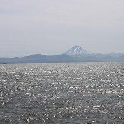 Первые транспортные суда с рыбой вышли из Петропавловска-Камчатского