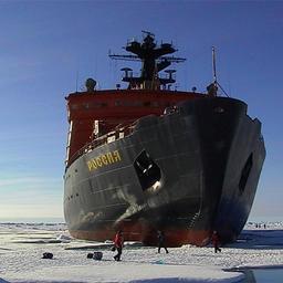Пять прибрежных государств отказались от рыболовства в Арктике