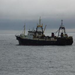 Рыбаки и пограничники договорились о работе в переходный период