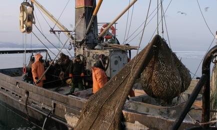 Прибрежное рыболовство в Сахалинской области