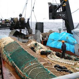Добыча рыбы на Дальнем Востоке