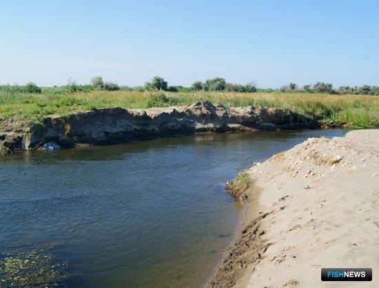 Уникальная лагуна Дагестана получит особый статус. Фото пресс-службы Общественной палаты РФ