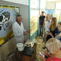 В музее гостей научили превращать морскую звезду в приятный сувенир