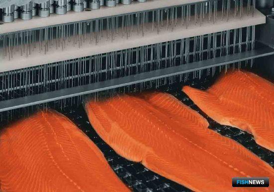 Применение рассольных систем позволяет предотвратить излишнюю потерю влаги при дефростировании замороженной рыбы и ее дальнейшей обработке