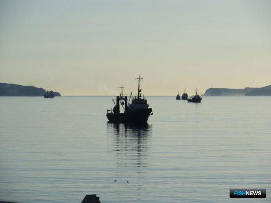 ВАС разъяснит вопрос со статусом рыбопродукции для таможенных целей
