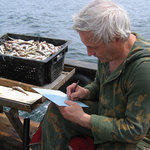 Исследование рыбных ресурсов Приморья