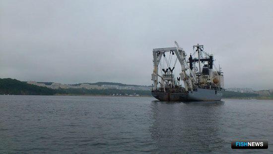 XI Международный конгресс рыбаков, который ежегодно проводится во Владивостоке, в этом году состоится на площадке Дальневосточного федерального университета