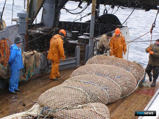 Рыбопромышленники вырабатывают позицию по ставкам сбора