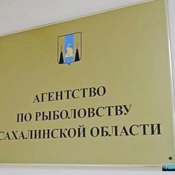 Место главы агентства пока вакантно. Фото пресс-службы правительства Сахалинской области