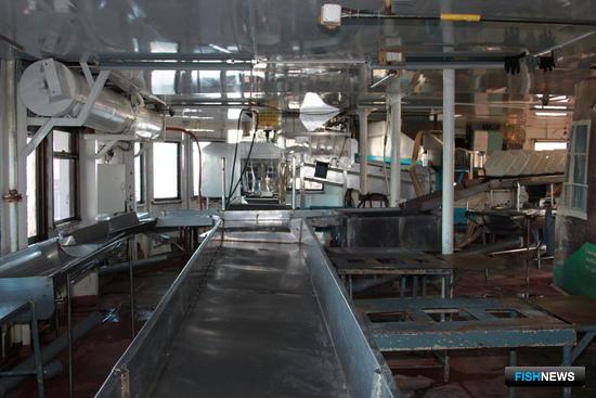 Для предприятий Ульчского района красная путина на Амуре завершилась, как и для всех, раньше ожидаемого срока (база «Ерофей»)