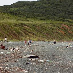 На берег бухты Восточной острова Рикорда море выносит мусор в особо крупных объемах. Фото организаторов ПОВС